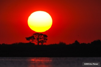 Chobe River - Sunset