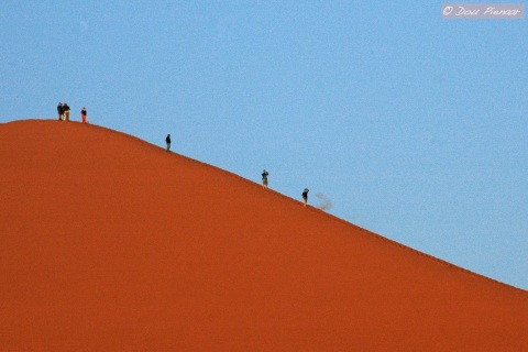 Scale of the Sossusvlei dunes