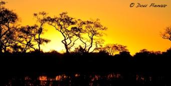 Xaranna Botswnana Delta
