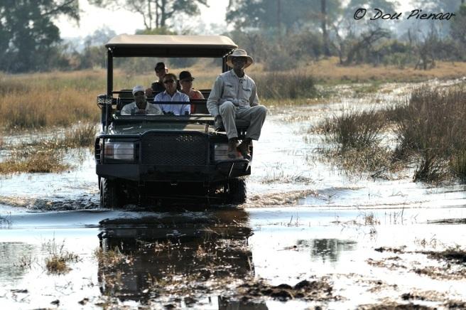 Xaranna in the Okavango Delta