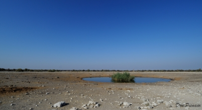 Wide angle shot of the (Theatre Stage) Chudob Waterhole in Etosha